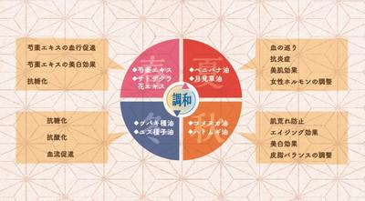 Funsai01